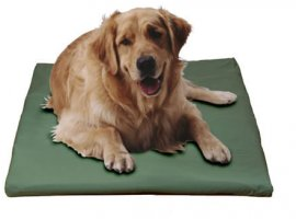 Canine Cooler Cozy Cover Hunter Medium (Free Shipping Today!)