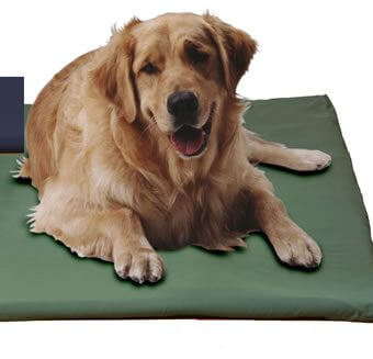 canine-cooler-cover-navy