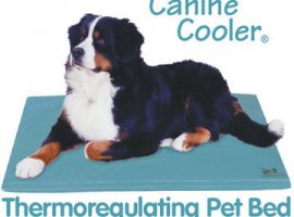 Canine Cooler (36in X 48in) (Free Shipping Today!)