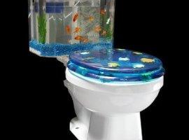 Fish 'n Flush Toilet-Tank Aquarium Kit (Today's Sale Price!)